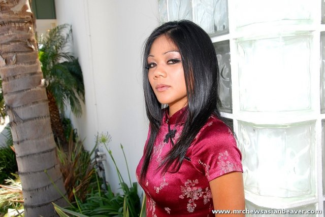 Гламурная азиатка с шикарной жопой ебется по-собачьи в пизду