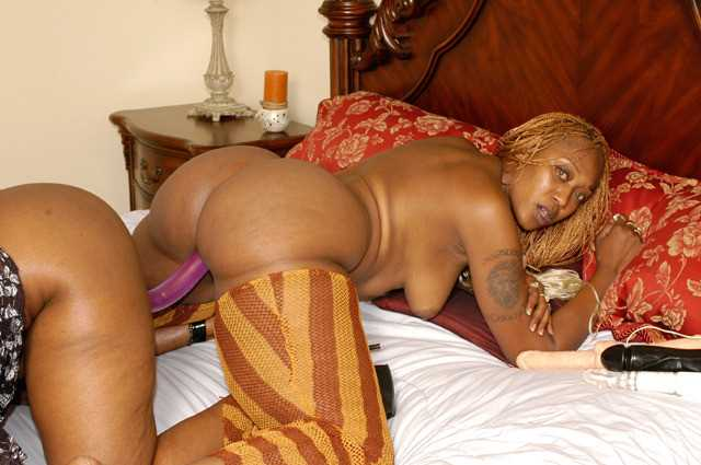 Негритянки с большими жопами дрочат страпоном